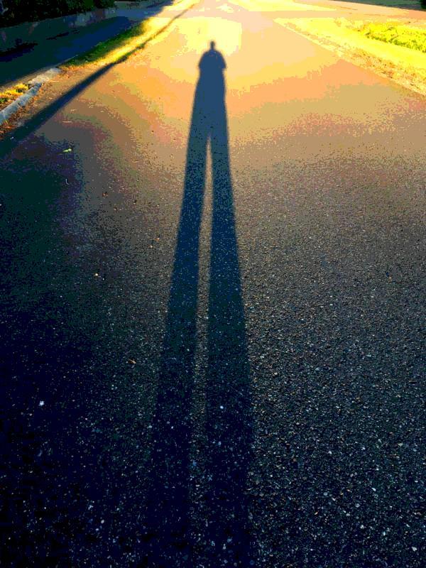 Health benefits of regular walking poster of long shadow on road
