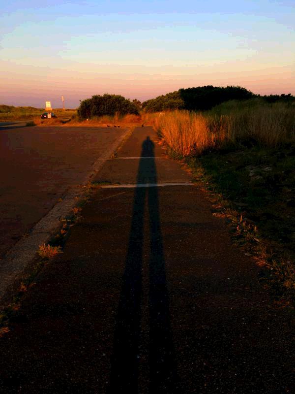 Health benefits of regular walking for health long shadow on sidewalk