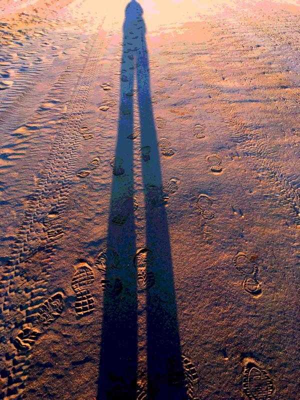health benefits of regular walking long shadow on beach footprints around